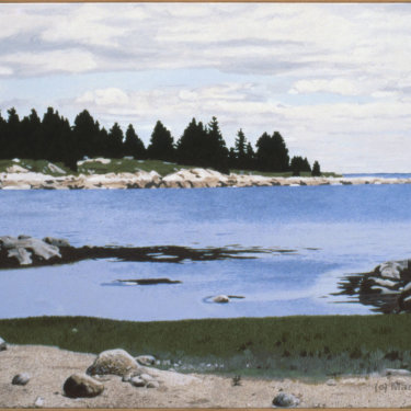 MR-393 Maine Cove (Sold)