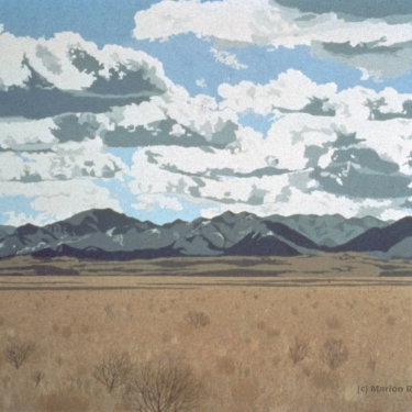 MR-299 Southern New Mexico in Winter (Sold)