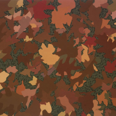 MR-261 Autumn Leaves on Grass #2