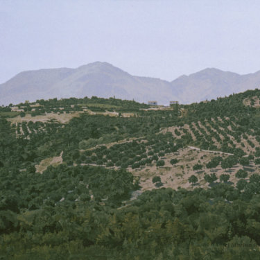 MR-314 Greek Countryside