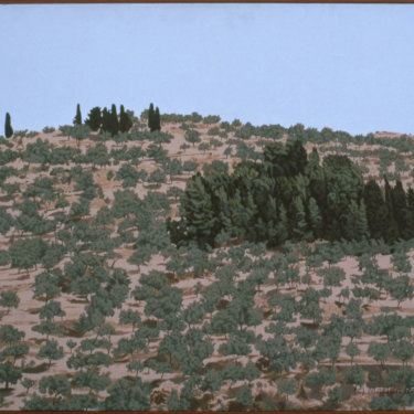 MR-336 Greek Hill with Olive Trees