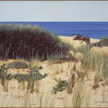 MR-383 Cape Cod–Grasses near the Beach